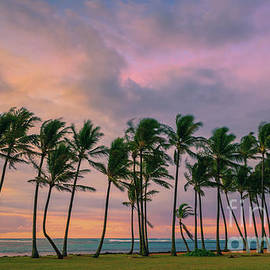 Henk Meijer Photography - Sunrise Kapaa Beach Park - Kauai
