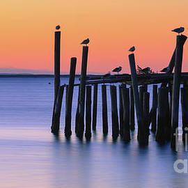 Sunrise Provincetown - Cape Cod - Massachusetts by Henk Meijer Photography