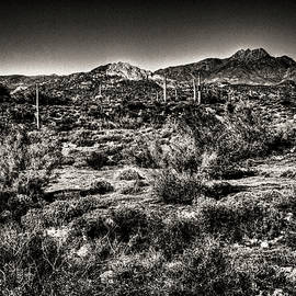 Roger Passman - Superstition Wilderness from the Apache Trail