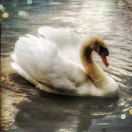 Christine Paris - Swan
