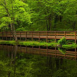 The Bridge by Karol Livote