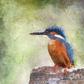 The Kingfisher by Sarah Kirk - Sarah Kirk