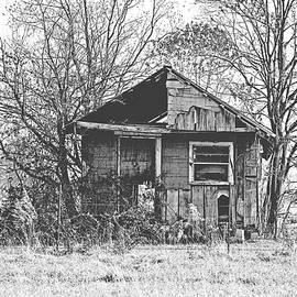 The Old Home Place by Scott Pellegrin