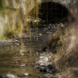 Jeremy Lavender Photography - The Wee Bridge