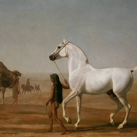 The Wellesley Grey Arabian Led Through The Desert - Jacques-Laurent Agasse