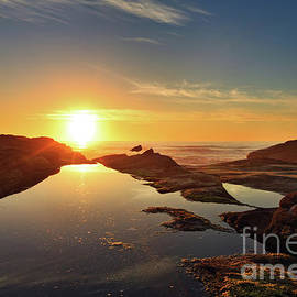 Tidal Pools by Beve Brown-Clark Photography