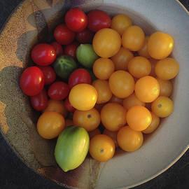 David Stone - Tomatoes