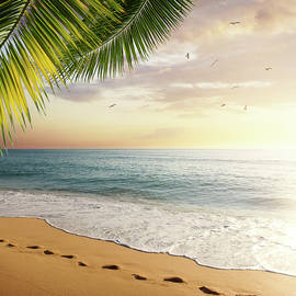 Carlos Caetano - Tropical Beach