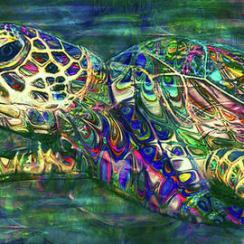 Tropical Sea Turtle 2 by Jack Zulli