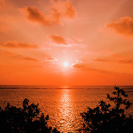 Oleg Ver - Tropical sunset