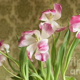 Alana Ranney - Tulips
