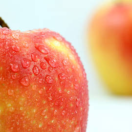 Two red gala apples by Paul Ge