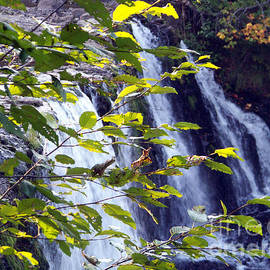 Upper Rock Creek Falls by Charles Robinson