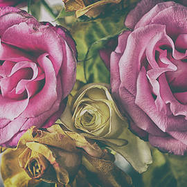 Vintage Rose - Martin Newman