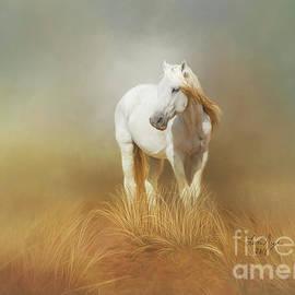 Lena Auxier - White Horse