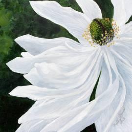 Kelley Gruver - White Magnolia