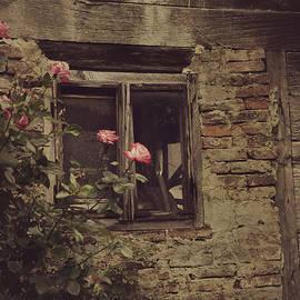 Mythja Photography - Window