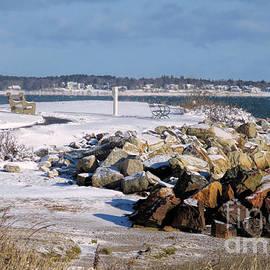 Janice Drew - Winter by the Sea