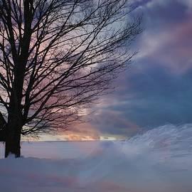 LuAnn Griffin - Winter Pastels