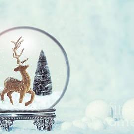 Winter Snow Globe With Reindeer Figure - Amanda Elwell