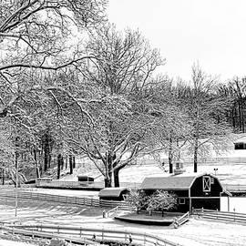 Allen Beatty - Winter Wonderland 23