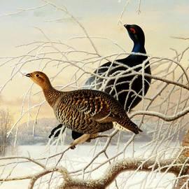 Wood Grouse Couple - Ferdinand von Wright