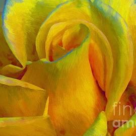 John  Kolenberg - Yellow Rose