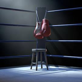Boxing Corner And Boxing Gloves - Allan Swart