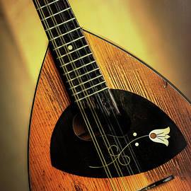 10.1845 Framus Mandolin by M K Miller