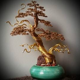 Ricks Tree Art - #116 Japanese Shari wire tree sculpture