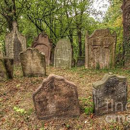 Michal Boubin - Old Jewish Cemetery