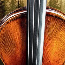 137 .1841 Violin By Jean Baptiste Vuillaume by M K Miller
