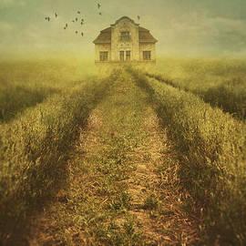Mythja Photography - House in field