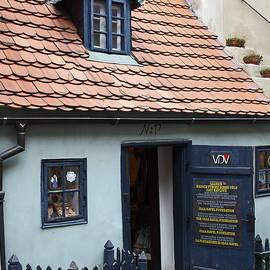 Sally Weigand - 16 Century House