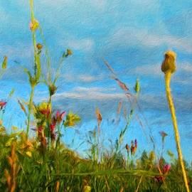 Margaret J Rocha - Nature Landscape Jobs
