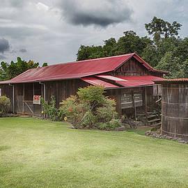 1930s Kona Coffee Farmhouse  by Susan Rissi Tregoning