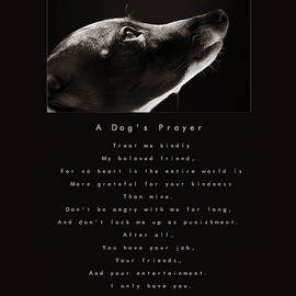 A Dog's Prayer  A Popular Inspirational Portrait And Poem Featuring An Italian Greyhound Rescue by Angela Rath