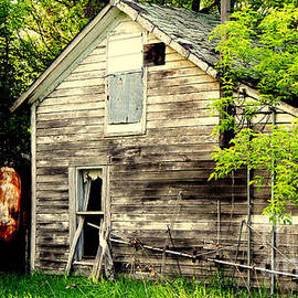 Abandoned Home by Curtis Tilleraas