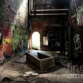 FineArtRoyal Joshua Mimbs - Abandonment