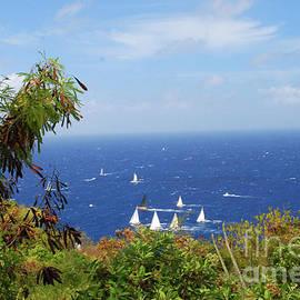 Antigua by Gary Wonning