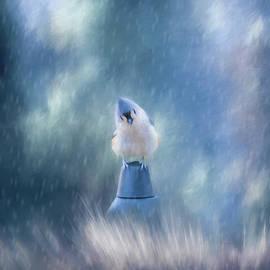 Cathy Kovarik - April Showers