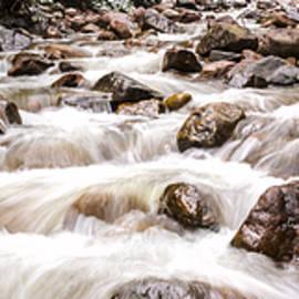 Autumn At Gore Creek - Vail Colorado by Brian Harig
