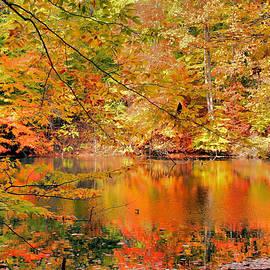 Kristin Elmquist - Autumn Reflections