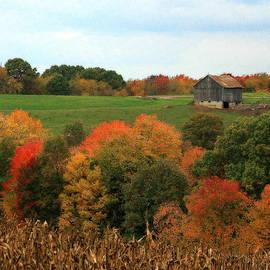 Barn On Autumn Hillside  A Seasonal Perspective Of A Quiet Farm Scene by Angela Rath