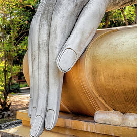 Buddha Hand - Adrian Evans