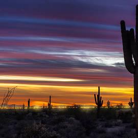 Colorful Desert Skies  by Saija  Lehtonen
