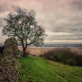Countryside - Martin Newman
