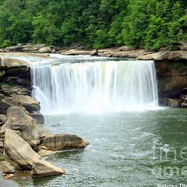 Cumberland Falls Kentucky by Charlene Cox