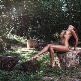 Traven Milovich - Dany