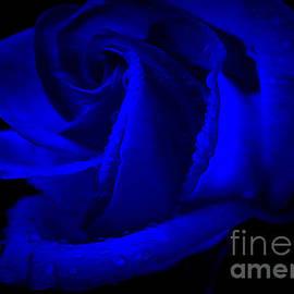 Krissy Katsimbras - Forever Blue